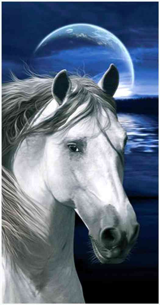 handtücher mit pferden